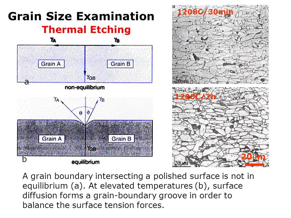 Grain Size Examination