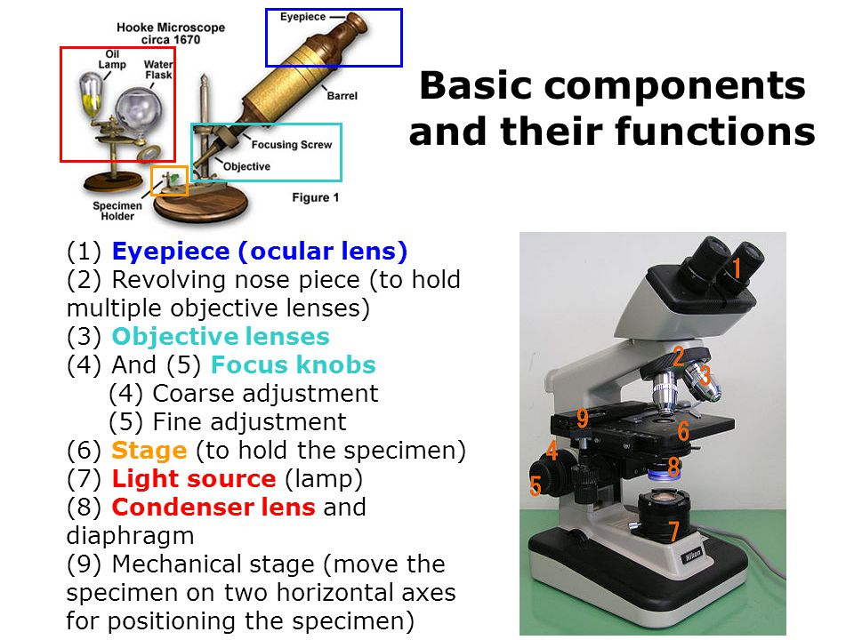 Basic components and their functions