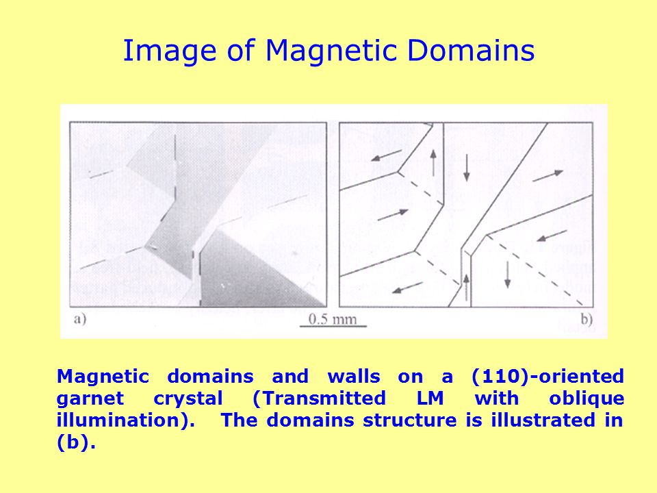 Image of Magnetic Domains