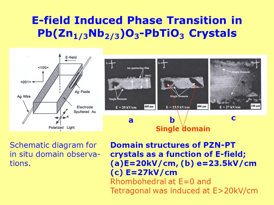E-field Induced Phase Transition in Pb(Zn1/3Nb2/3)O3-PbTiO3 Crystals