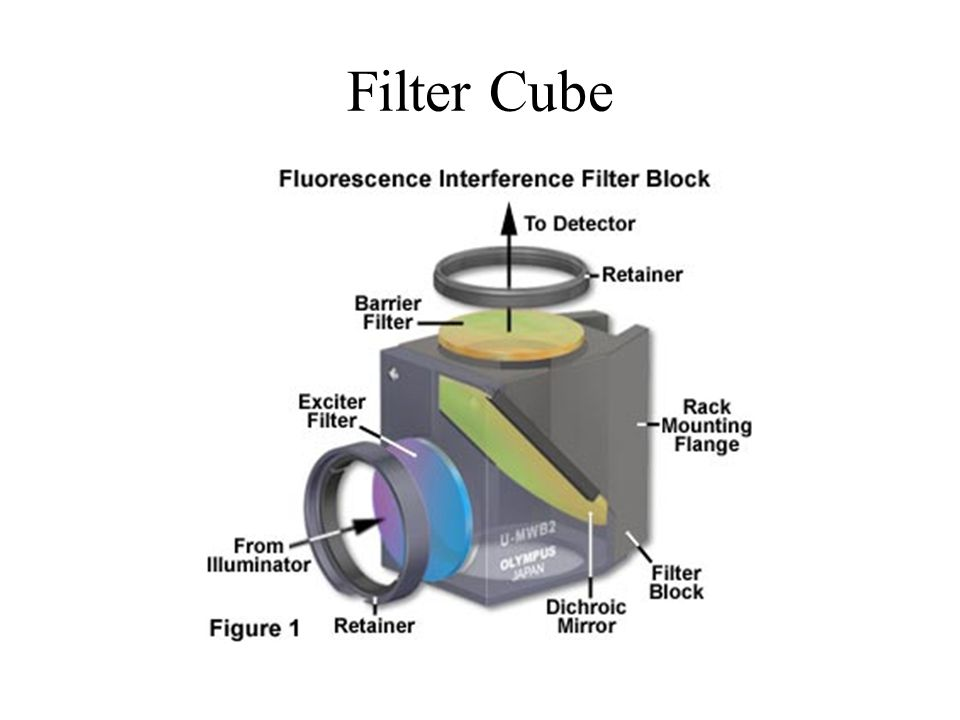 Filter Cube