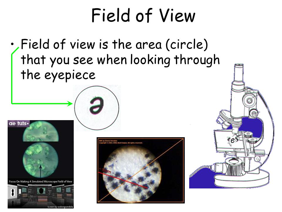 Field of View Field of view is the area (circle) that you see when looking through the eyepiece