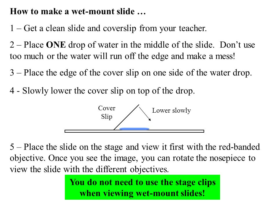 You do not need to use the stage clips when viewing wet-mount slides!