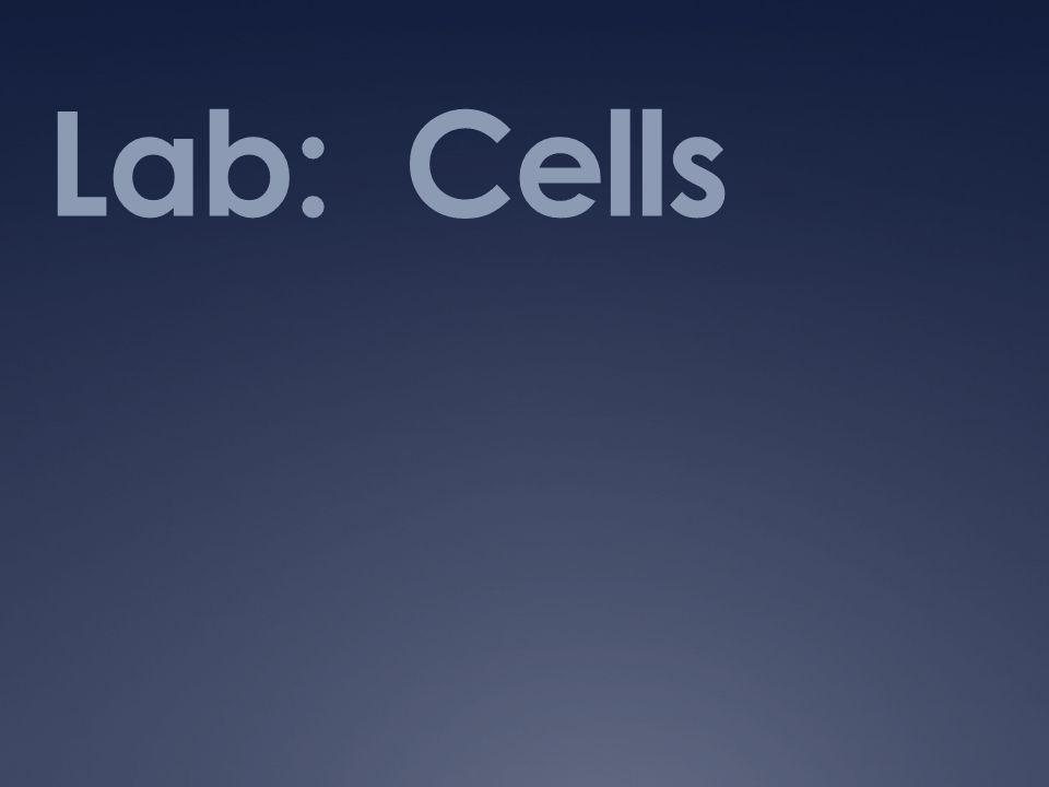 Lab: Cells