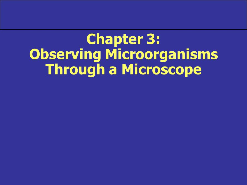 Chapter 3: Observing Microorganisms Through a Microscope