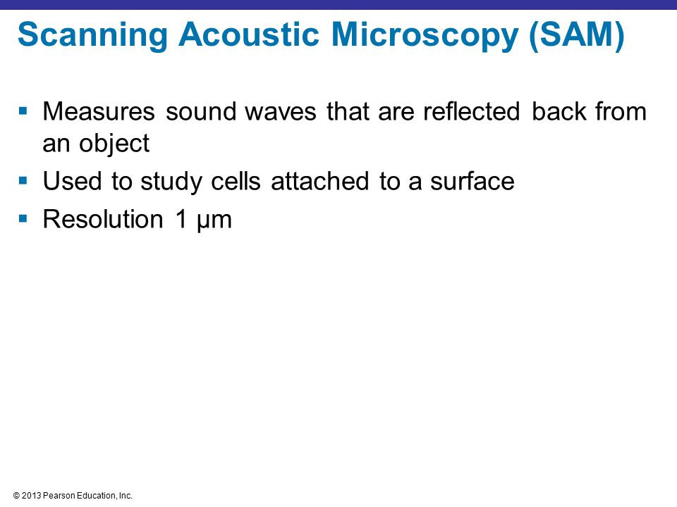 Scanning Acoustic Microscopy (SAM)