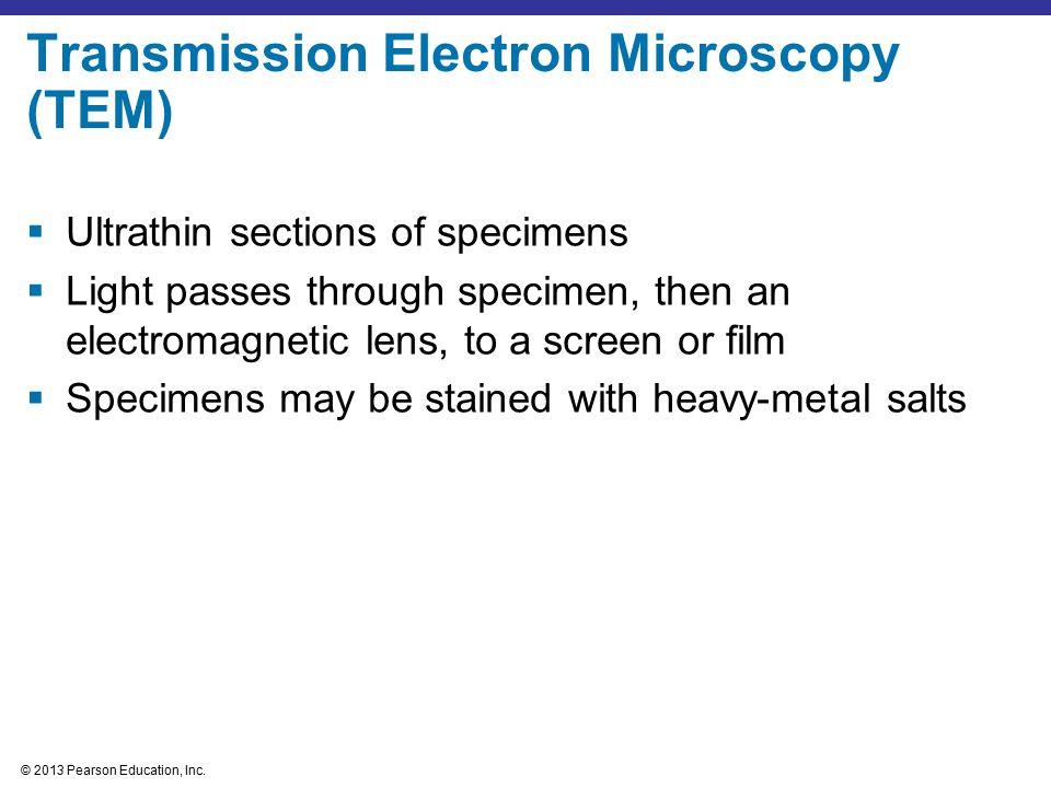 Transmission Electron Microscopy (TEM)
