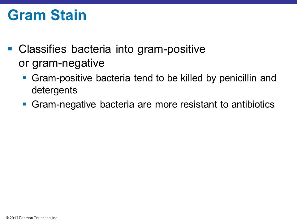 Gram Stain Classifies bacteria into gram-positive or gram-negative
