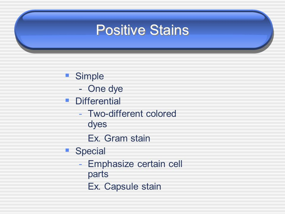 Positive Stains Simple - One dye Differential