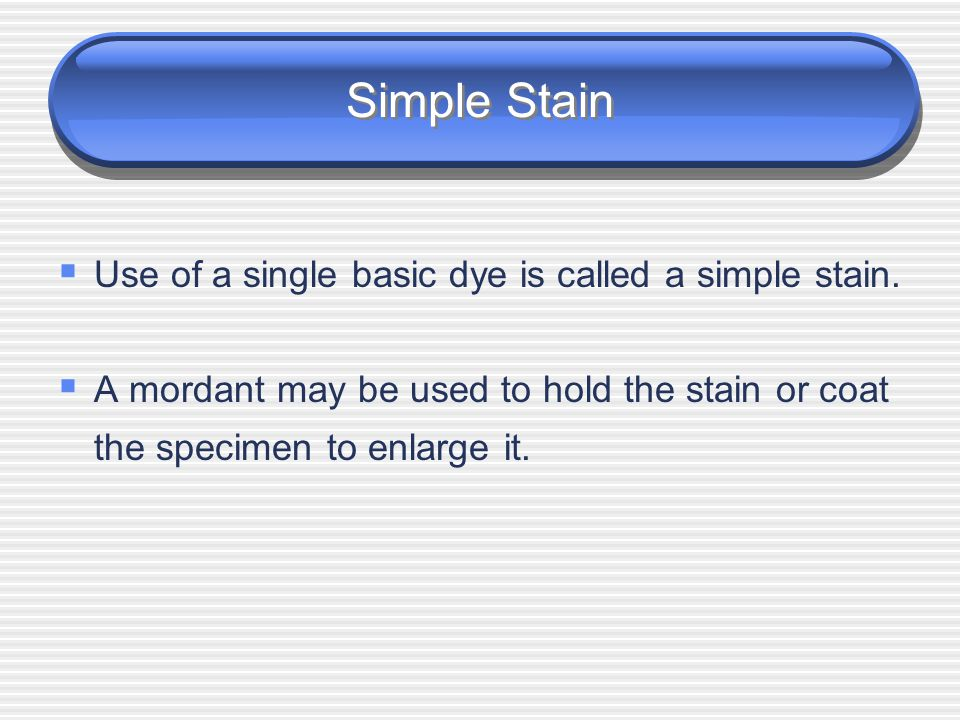 Simple Stain Use of a single basic dye is called a simple stain.