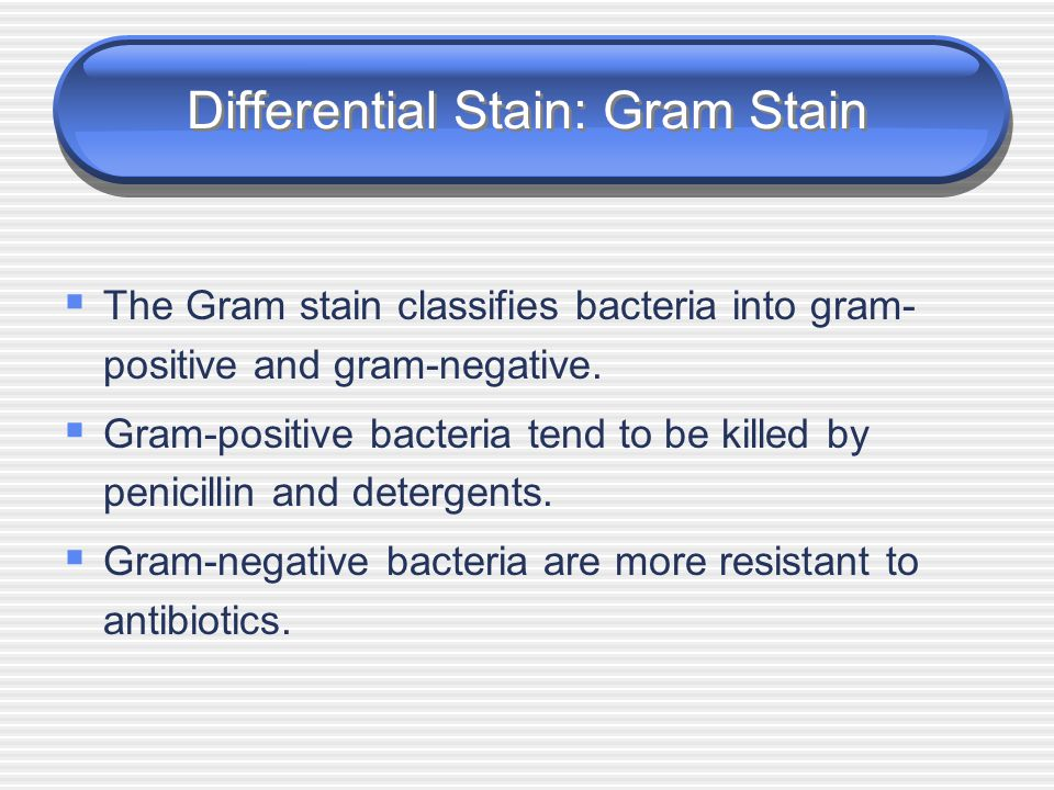 Differential Stain: Gram Stain