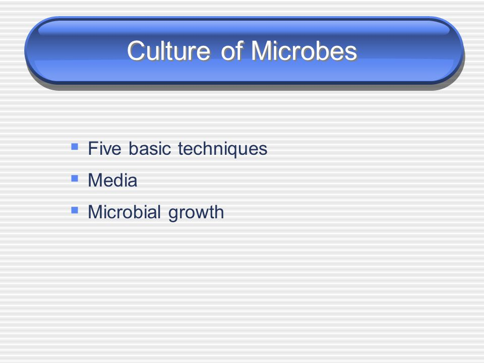 Culture of Microbes Five basic techniques Media Microbial growth