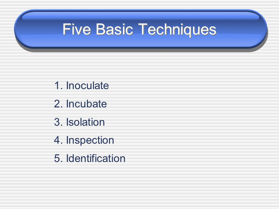 Five Basic Techniques 1. Inoculate 2. Incubate 3. Isolation