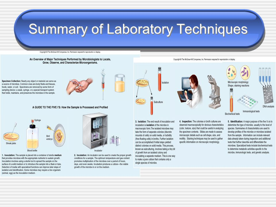 Summary of Laboratory Techniques