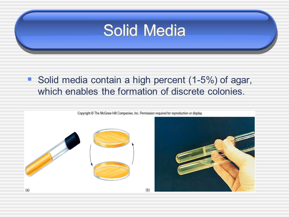 Solid Media Solid media contain a high percent (1-5%) of agar, which enables the formation of discrete colonies.