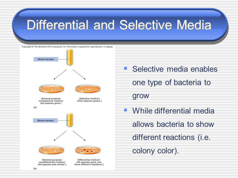 Differential and Selective Media