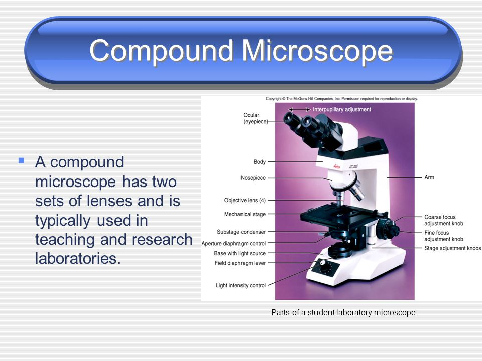 Parts of a student laboratory microscope
