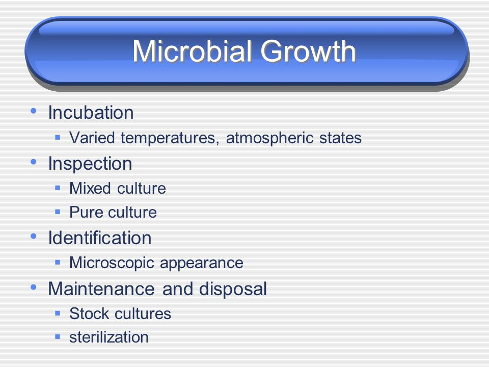 Microbial Growth Incubation Inspection Identification