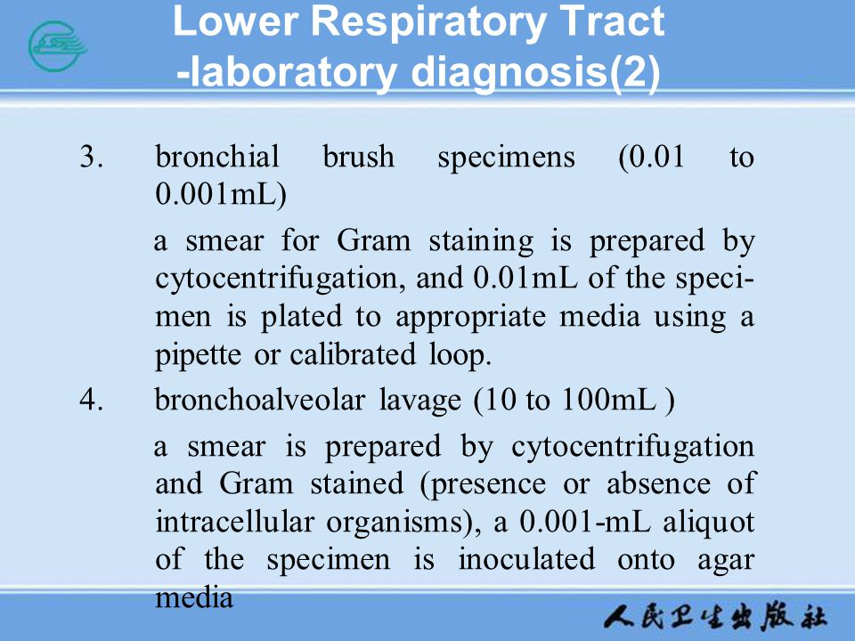 Lower Respiratory Tract -laboratory diagnosis(2)