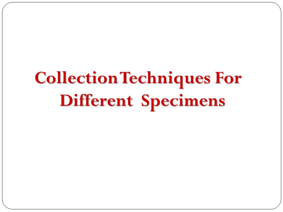 Collection Techniques For Different Specimens