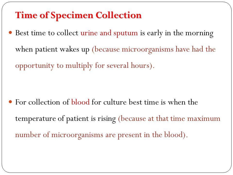 Time of Specimen Collection