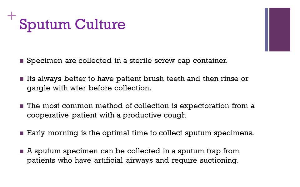 Sputum Culture Specimen are collected in a sterile screw cap container.