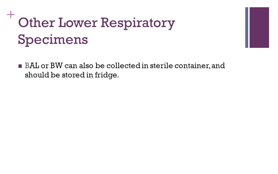 Other Lower Respiratory Specimens