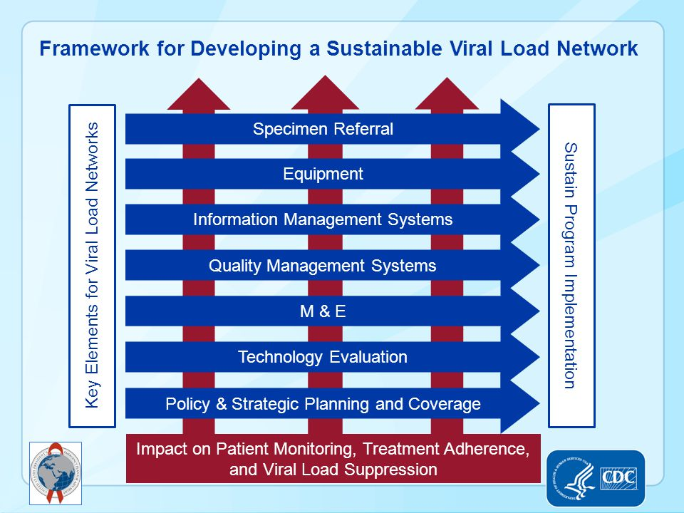 Framework for Developing a Sustainable Viral Load Network