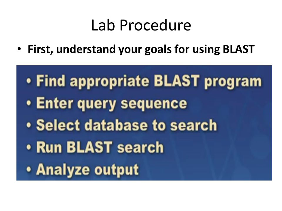 Lab Procedure First, understand your goals for using BLAST