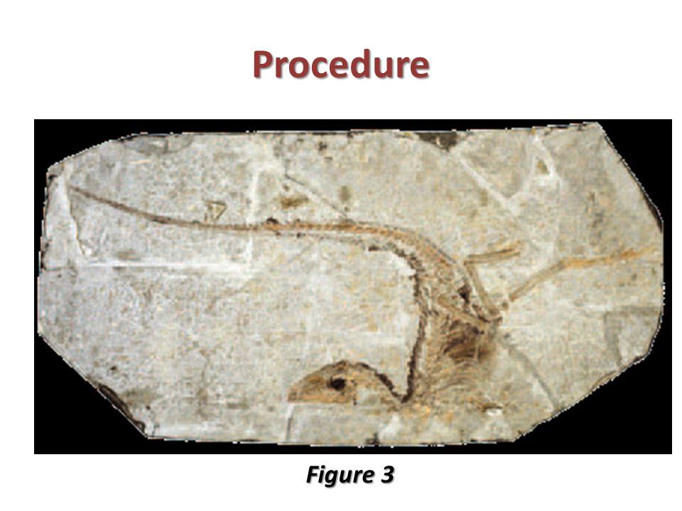 Procedure Figure 3