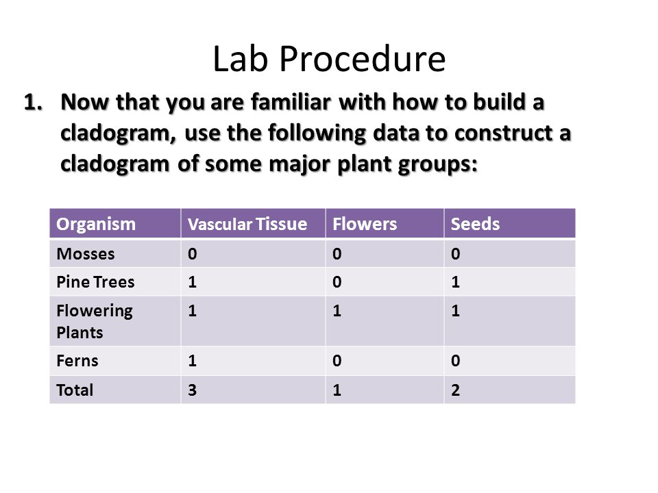 Lab Procedure Now that you are familiar with how to build a cladogram, use the following data to construct a cladogram of some major plant groups: