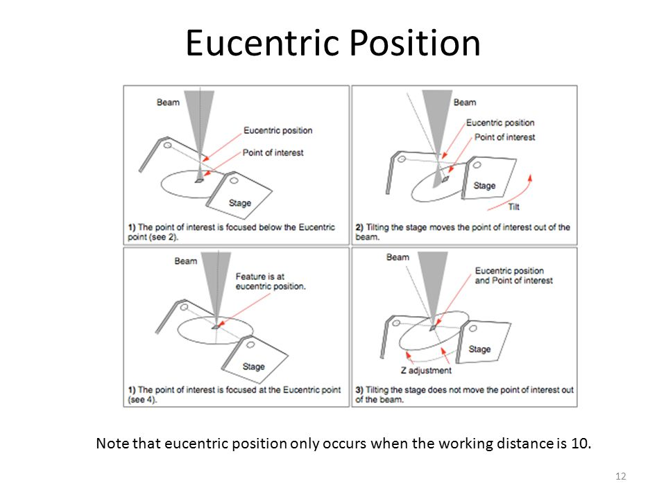 Eucentric Position Note that eucentric position only occurs when the working distance is 10.