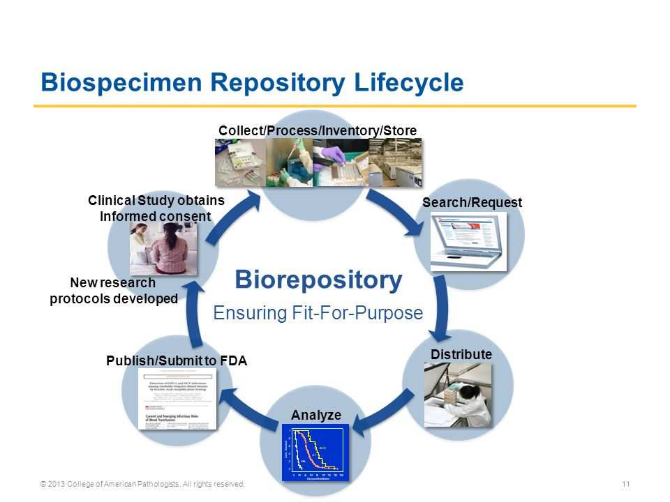 Biospecimen Repository Lifecycle