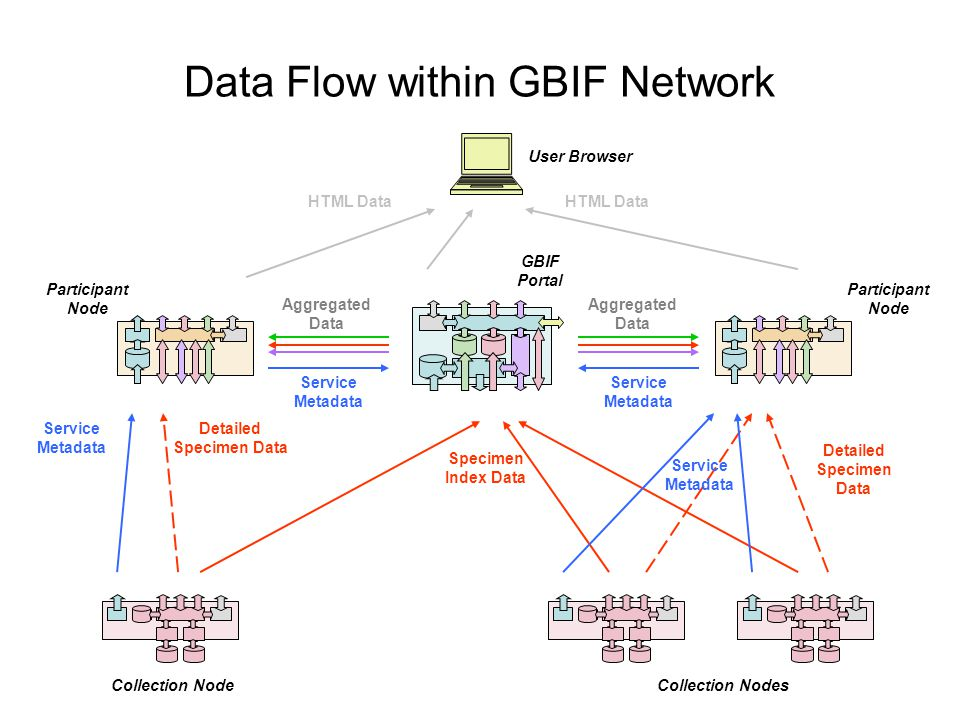 Data Flow within GBIF Network