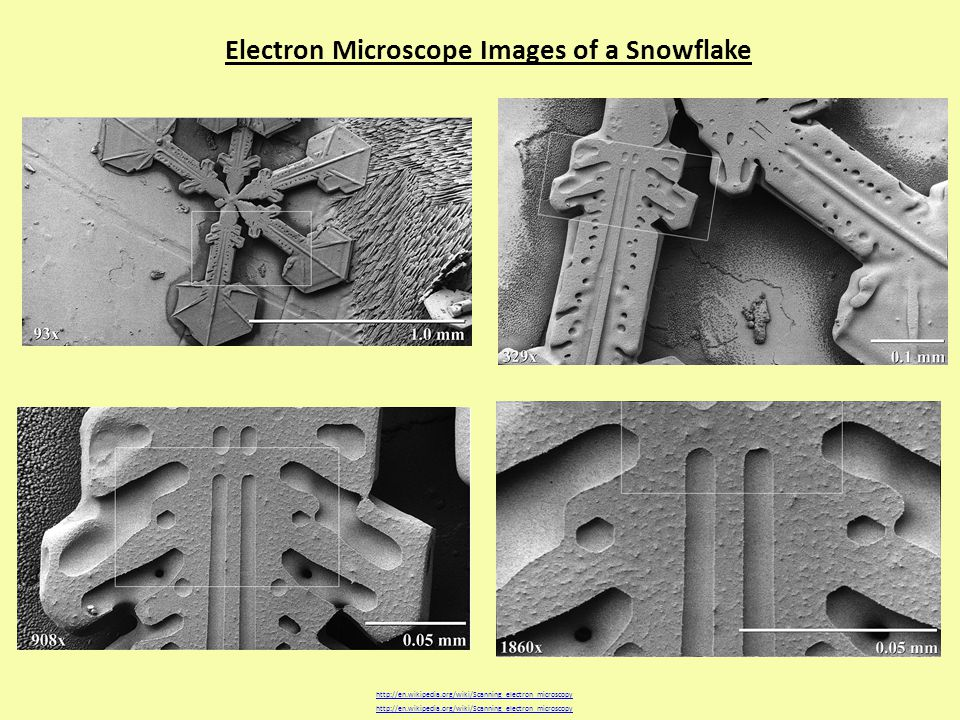 Electron Microscope Images of a Snowflake