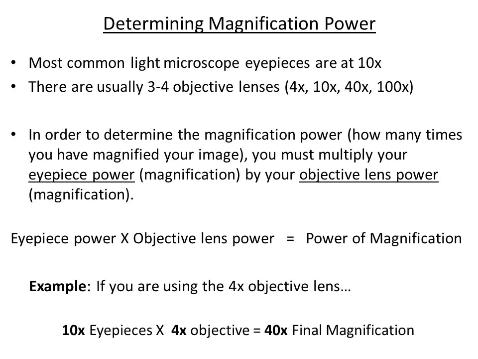 Determining Magnification Power
