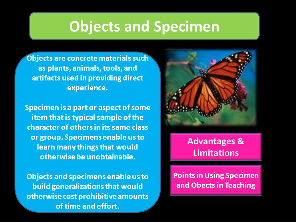 Objects and Specimen Advantages & Limitations