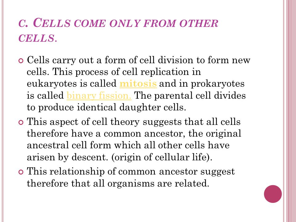 c. Cells come only from other cells.