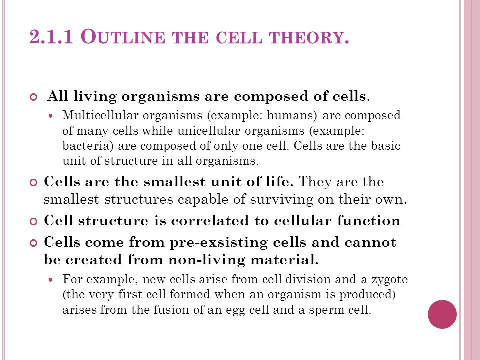 2.1.1 Outline the cell theory.