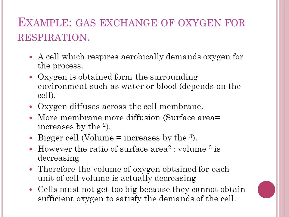 Example: gas exchange of oxygen for respiration.