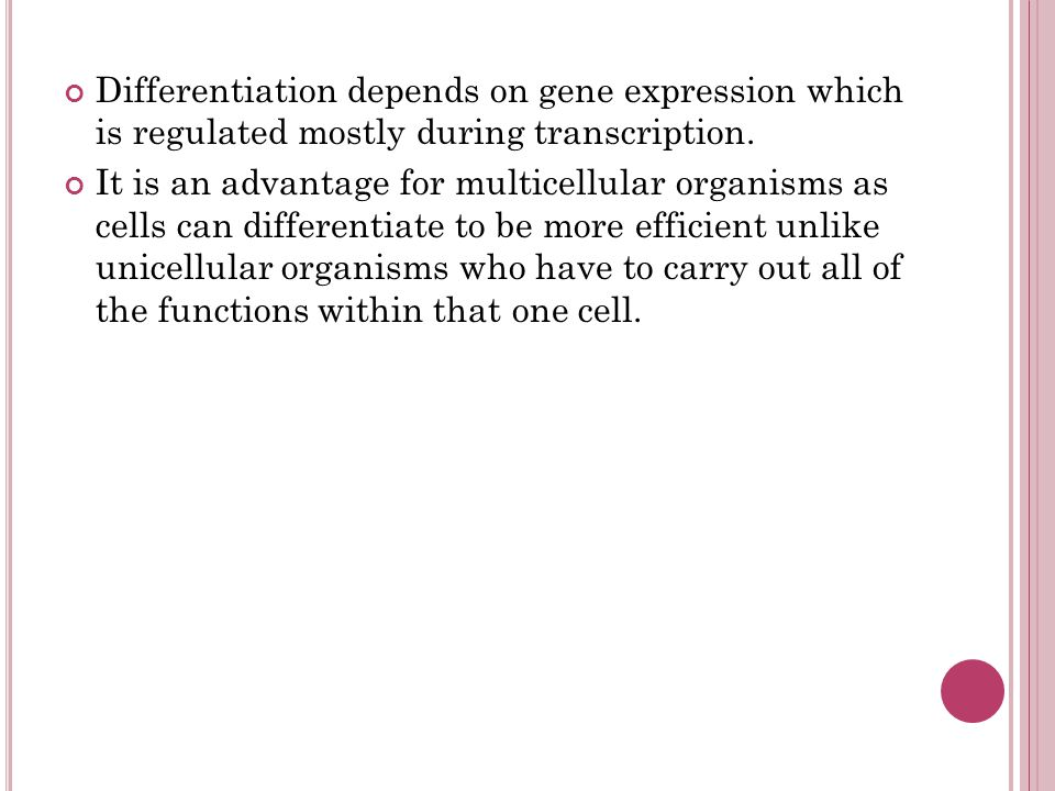 Differentiation depends on gene expression which is regulated mostly during transcription.