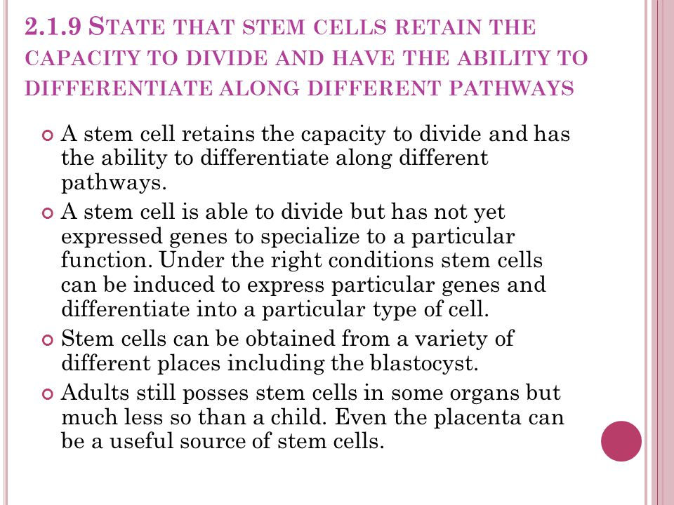 2.1.9 State that stem cells retain the capacity to divide and have the ability to differentiate along different pathways