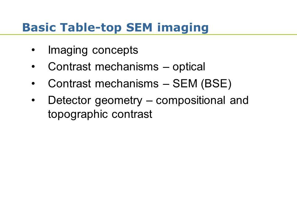 Basic Table-top SEM imaging