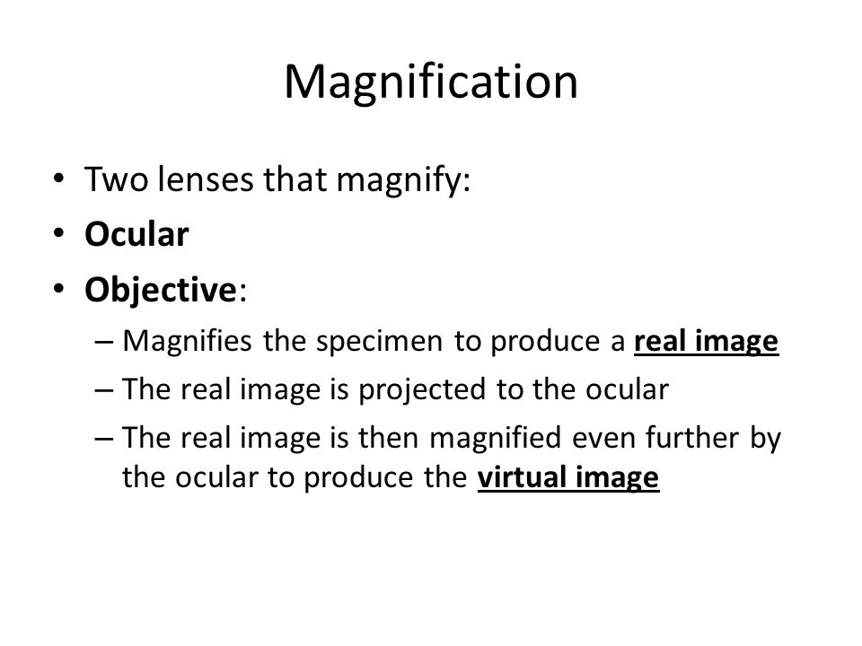Magnification Two lenses that magnify: Ocular Objective: