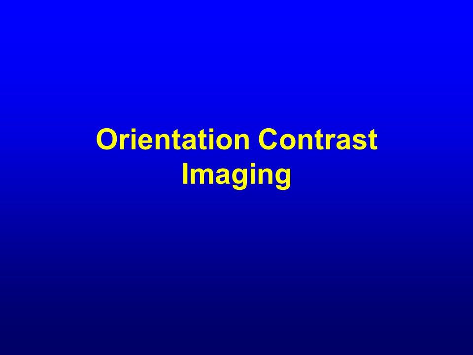 Orientation Contrast Imaging