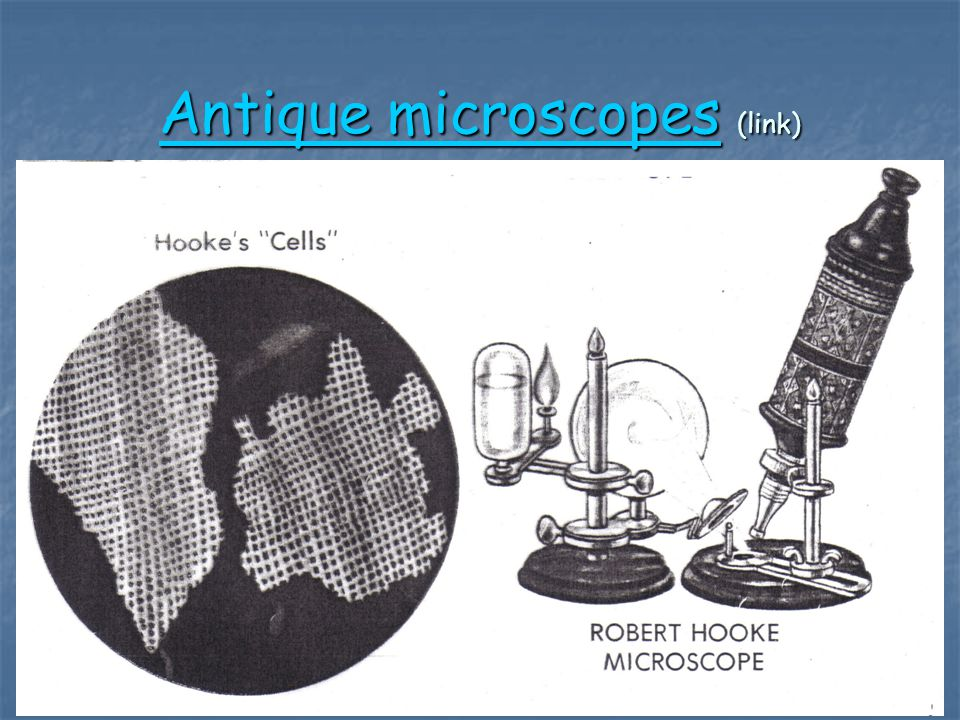 Antique microscopes (link)