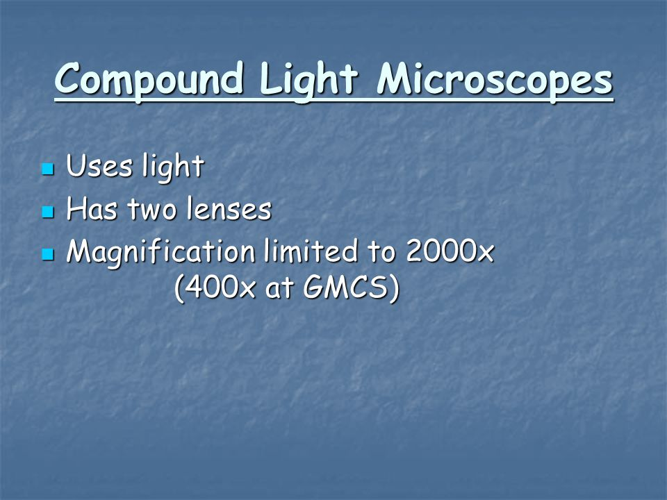 Compound Light Microscopes