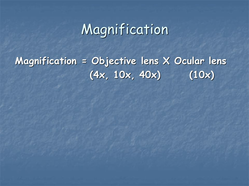 Magnification Magnification = Objective lens X Ocular lens