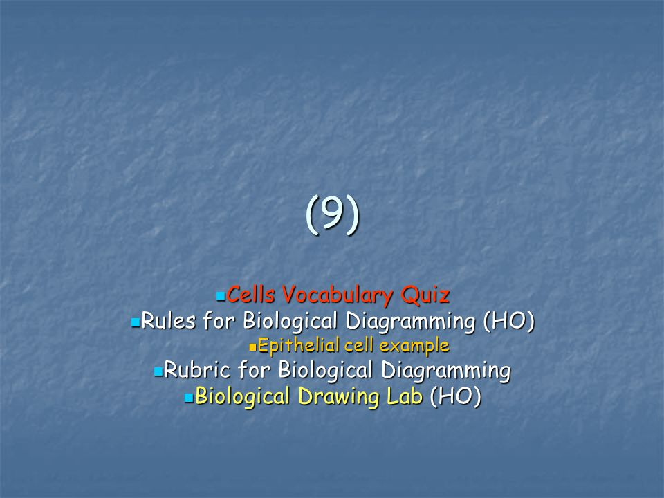 (9) Cells Vocabulary Quiz Rules for Biological Diagramming (HO)
