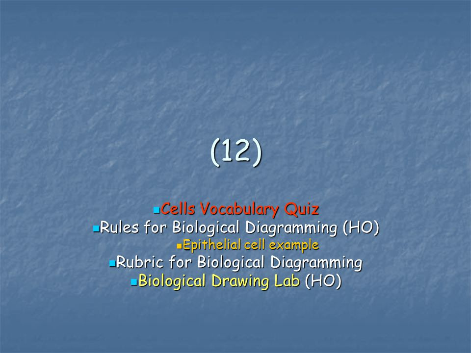 (12) Cells Vocabulary Quiz Rules for Biological Diagramming (HO)